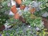 business-flower-pots