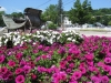 commercial-flower-beds-2