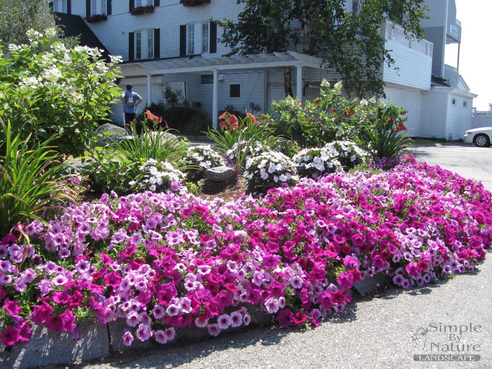 Commercial flower design simple by nature landscape for Simple flower garden design