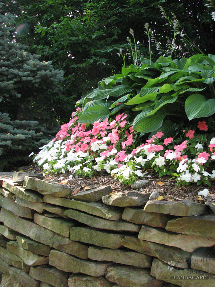 Flower garden design simple by nature lanscape for Simple flower garden design