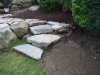 Comstock-steps